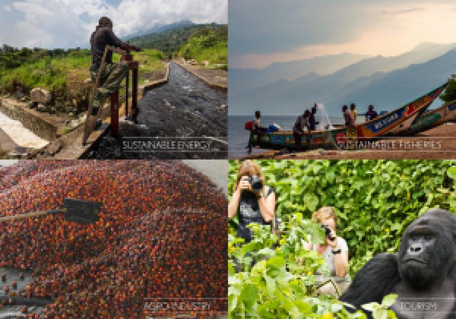 Le Parc national de Virunga et ses atouts majeurs font l'objet de toutes les attentions