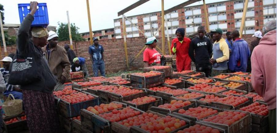 Les plans d'aide des pays africains passés à la loupe