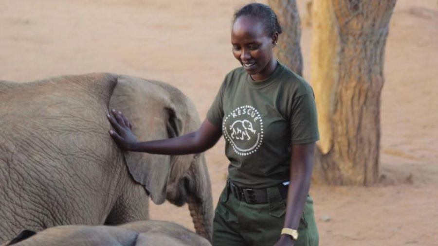 Les gardes forestiers, héros oubliés de la conservation de la vie sauvage
