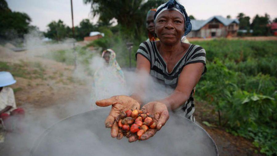 RDC : Un défenseur de l'environnement tué par un agent de Feronia