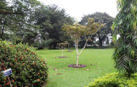 Tourisme en RDC: Les préparatifs du 1er salon international vont bon train