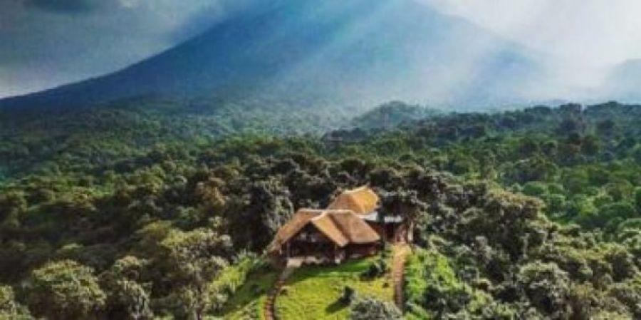 Biodiversité : Le Parc national des Virunga vise à atteindre son autonomie financière d'ici à 2030