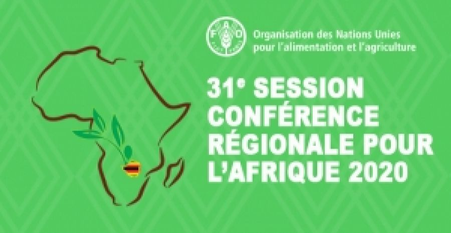 FAO- Regional Conference for Africa : Impacts of COVID-19 on food security and nutrition