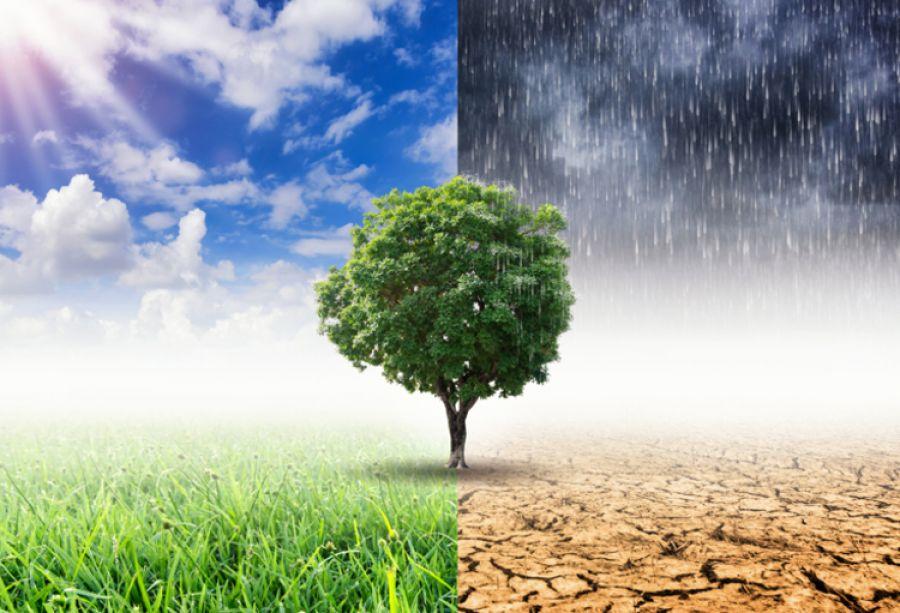 Adaptation au changement climatique :  180 milliards $ par an d'investissement sont nécessaires (ONU)